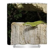 Observation Post Shower Curtain