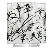 Obstacle To Justice Shower Curtain