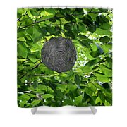 Occupied Bee Hive Shower Curtain