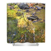 October Colors Reflected Shower Curtain