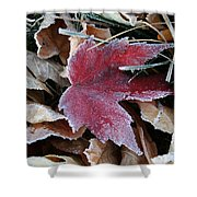 October Frost Shower Curtain