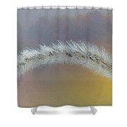 October Grass Shower Curtain