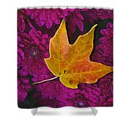 October Hues Shower Curtain by Paul Wear