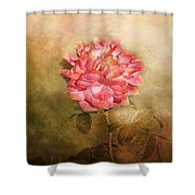 October Rose Shower Curtain