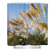 Of Sun And Sky And Wind Shower Curtain