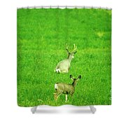 Oh For The Love Of Pete Shower Curtain