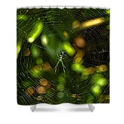Oh The Web We Weave Shower Curtain