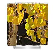 Oh Those Golden Leaves Shower Curtain