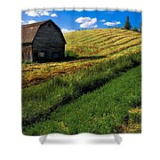 Old Barn In A Field Shower Curtain