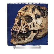 Old Bone's Skull On Blue Cloth Shower Curtain