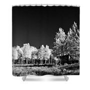 Old Cabin In The Aspen Shower Curtain