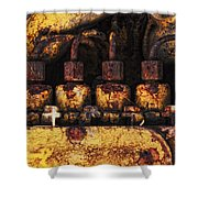 Old Cat In The Woods Shower Curtain