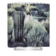 Old Cemetery On A Hill Shower Curtain