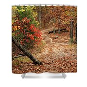 Old Country Road In Shannon County Shower Curtain