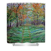 Old Country Road Shower Curtain