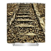 Old Dried Leaves Shower Curtain