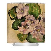 Old-fashioned African Violets Shower Curtain