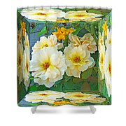Old Fashioned Yellow Rose - Mirror Box Shower Curtain