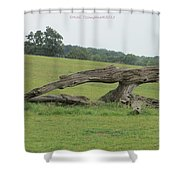 Old Guard Shower Curtain