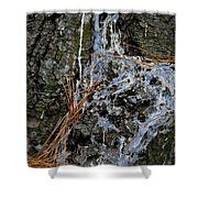 Old Needles And Sap Shower Curtain