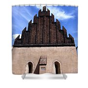 Old New Synagogue Shower Curtain by Linda Woods
