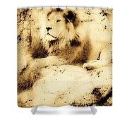 Old Photograph Of A Lion On A Rock Shower Curtain