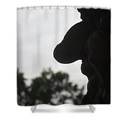 Old Profile Shower Curtain