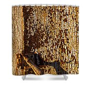 Old Rusty Door Shower Curtain
