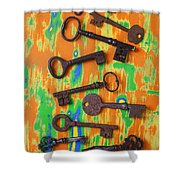 Old Rusty Keys Shower Curtain