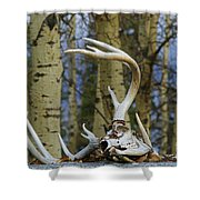 Old Skull And Antlers Shower Curtain