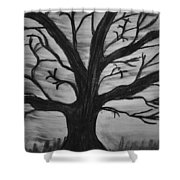 Old Tree With No Leaves Shower Curtain