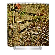 Old Weathered Gate Shower Curtain