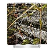 Old Weathered Gate Photoart II Shower Curtain