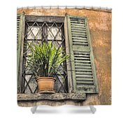 Old Window And A Green Plant Shower Curtain