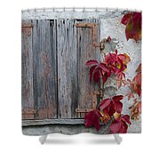 Old Window With Red Leaves Shower Curtain