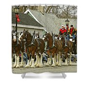 Olde Tyme Travel Clydesdales Shower Curtain