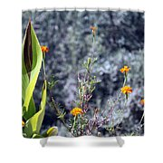 Olive Trees In The Background Shower Curtain