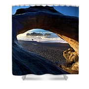 Olympic Drift Logs Shower Curtain