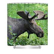 On His Way Shower Curtain