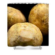 On Sale Today Shower Curtain