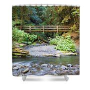 On The Trail To Marymere Shower Curtain