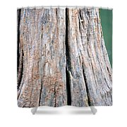 Once A Tree Shower Curtain