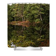 Once Upon An Autumn Morn Shower Curtain