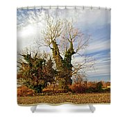 Once Was Home Shower Curtain