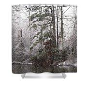 One Alabama Christmas Shower Curtain