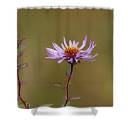 One Blossom Left Shower Curtain