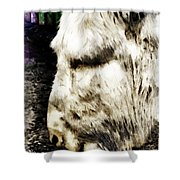 One Can't Complain Said Eeyore Shower Curtain