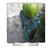 One Coconut Shower Curtain