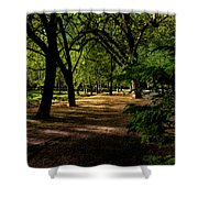 One Day In The City Park Shower Curtain