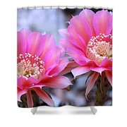 One Day Wonder Shower Curtain